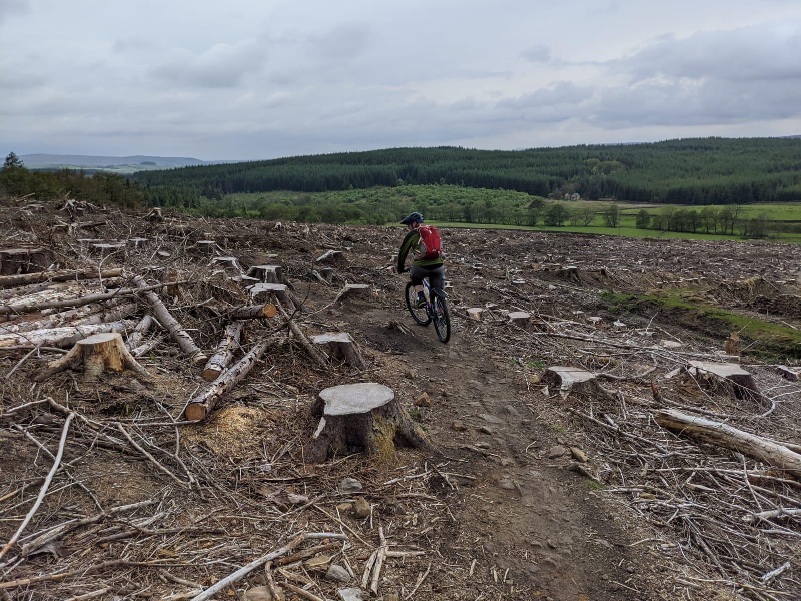 MTB, Mountain Bike Guiding,  Trail riding, MTB skills