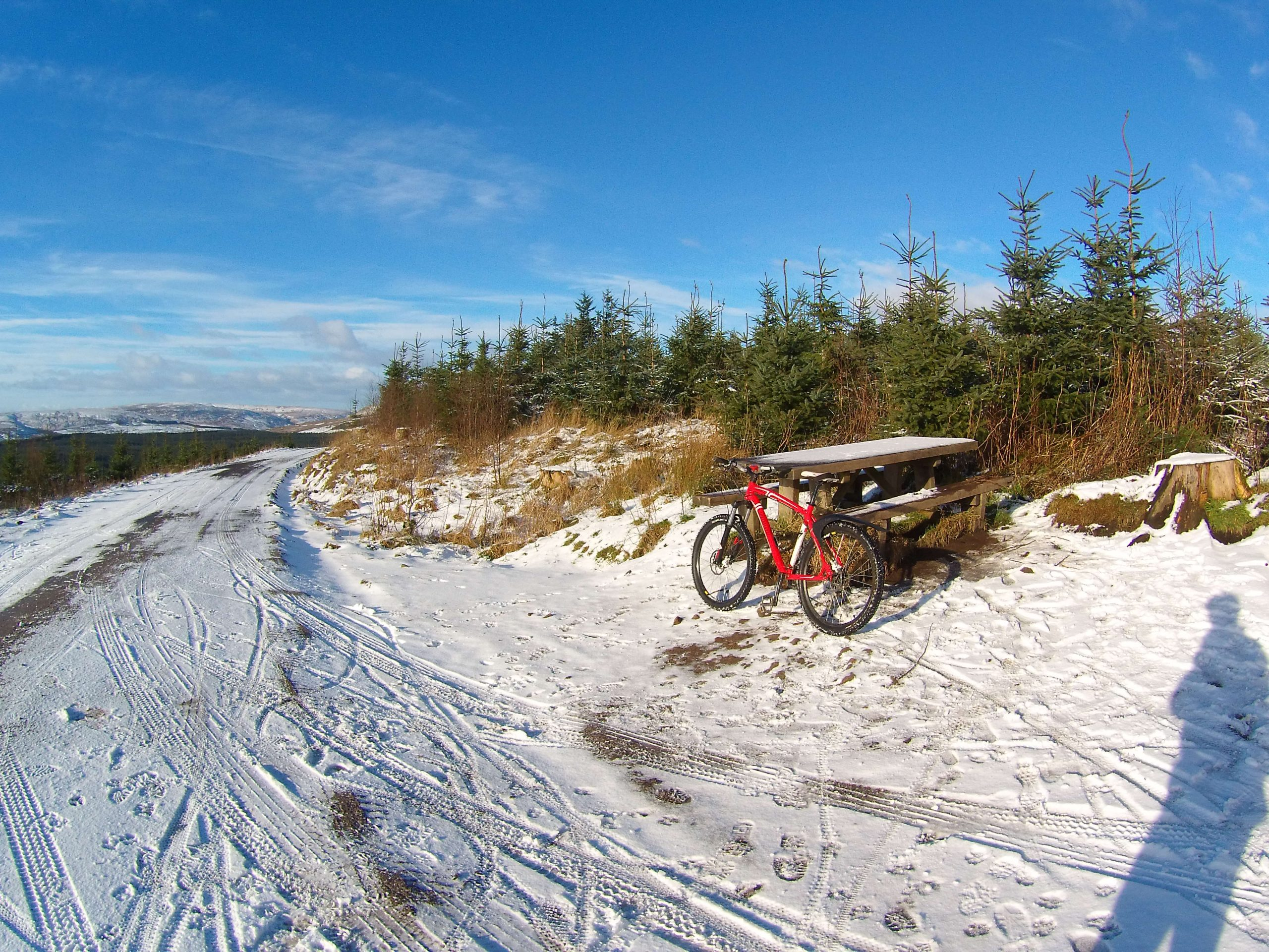 MTB, Mountain biking, Trail Centre, Gisbburn Forest, trail Skills, Bike guiding